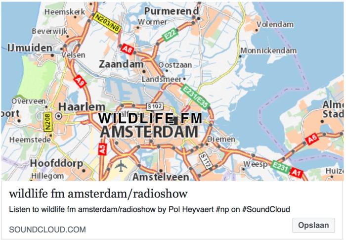 wildlife amsterdam